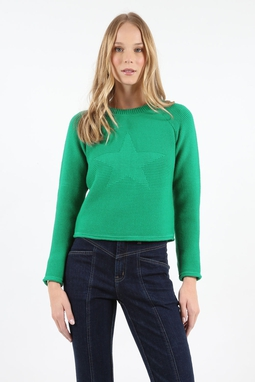 Blusa Trt Star verde